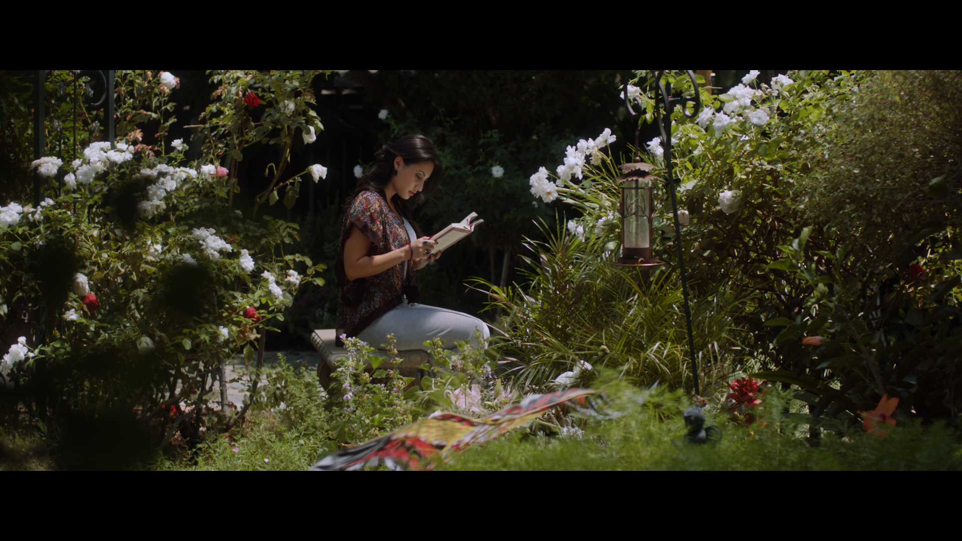BP Shahrzad reading in garden still photo